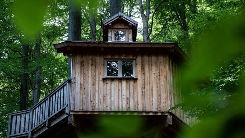 Šumski hotel u Donjoj Saskoj idealan je za izlete s malenima