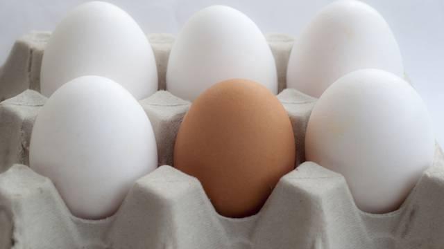 Koje odabrati: Znate li razliku između smeđeg i bijelog jajeta?