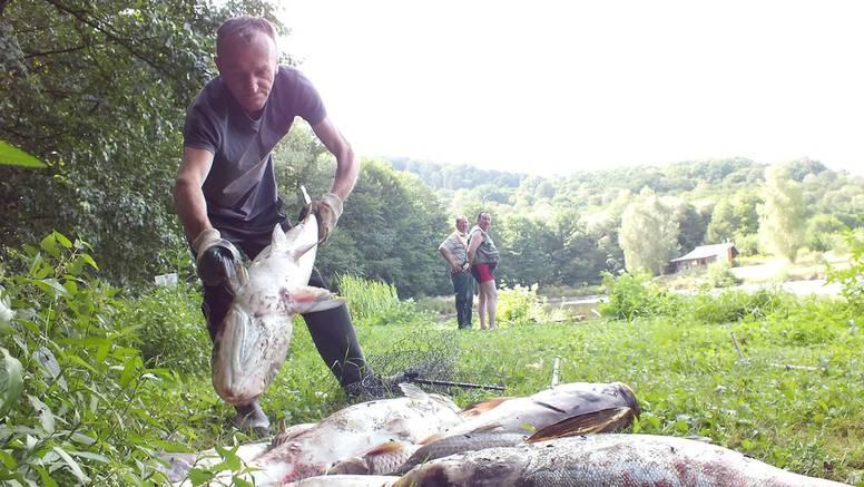 Suša uništila ribnjak 'Brzaja': Uginule velike količine ribe