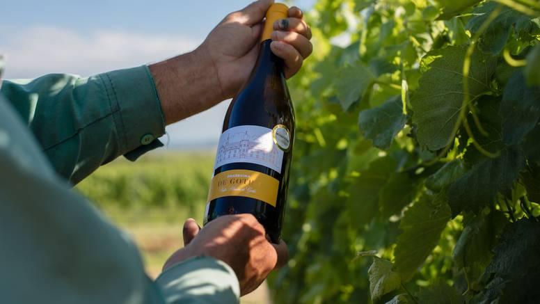 Vino koje morate probati jer je oduševilo vinske znalce – de Gotho graševina 2018.