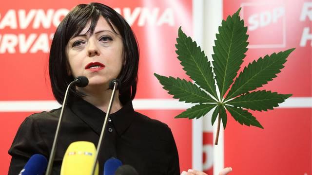 Holy želi 'lex cannabis': Devet biljaka s THC-om za svakoga?