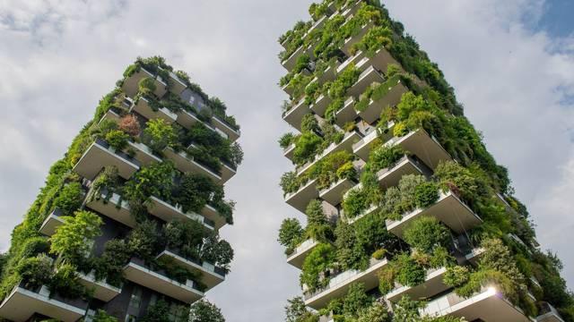 Vrtovi budućnosti: Vertikalna sadnja sve prisutnija u velikim gradovima čineći ih ugodnijima