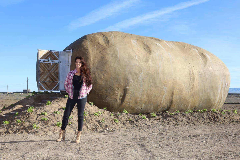 Hotel u obliku divovskog krumpira