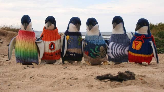 Penguin Foundation/Facebook