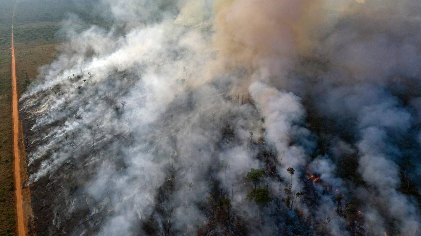An aerial view of forest fire of the Amazon taken with a drone is seen from an Indigenous territory in the state of Mato Grosso