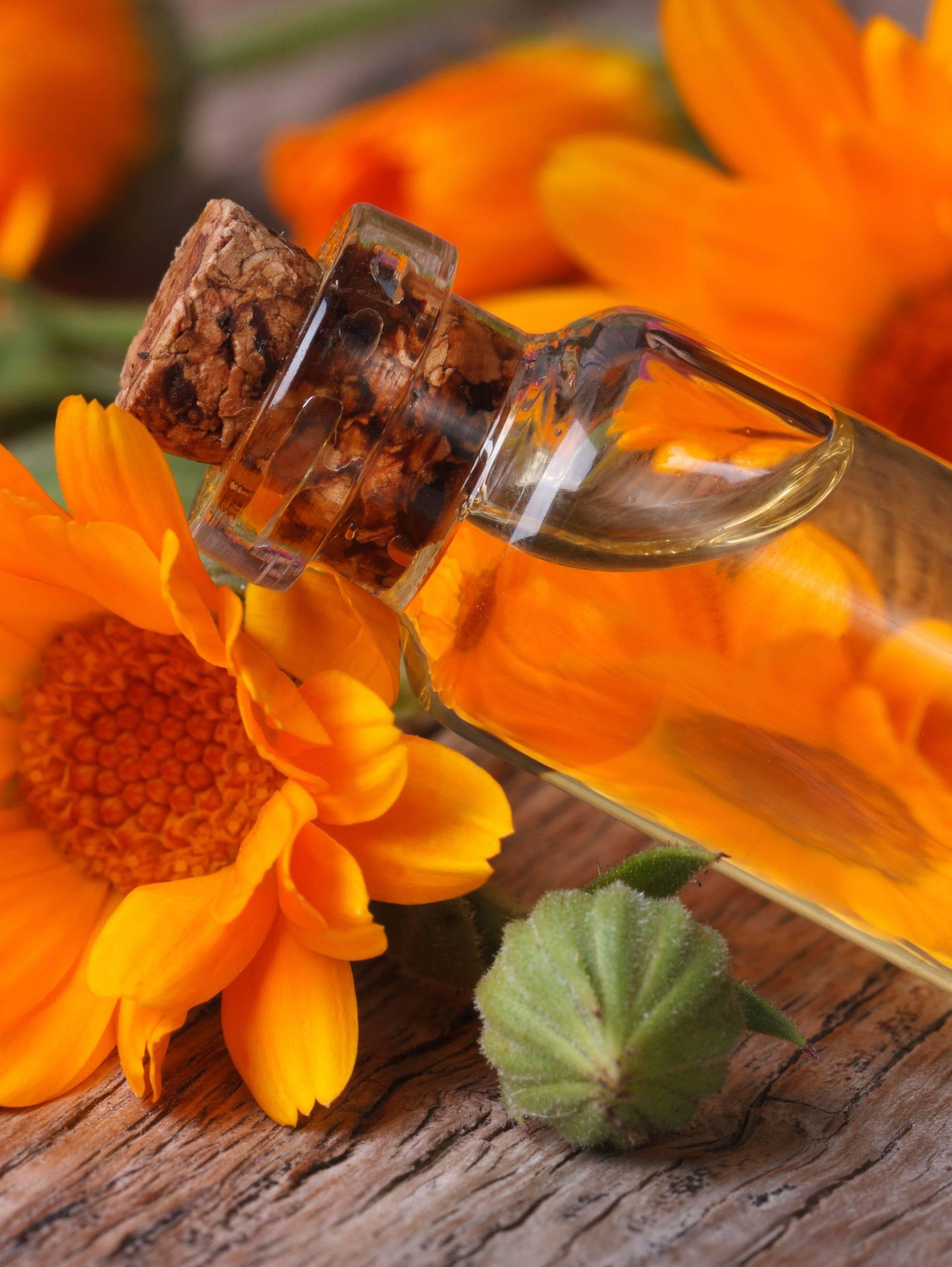 Magični neven: Biljka koja radi čuda za crijeva, kožu, krv i tlak