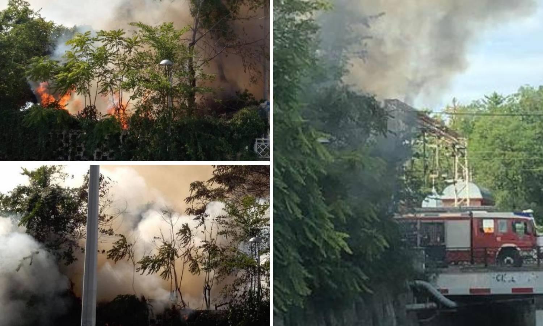 Video: Kod Botaničkog vrta gori raslinje i građevinski otpad