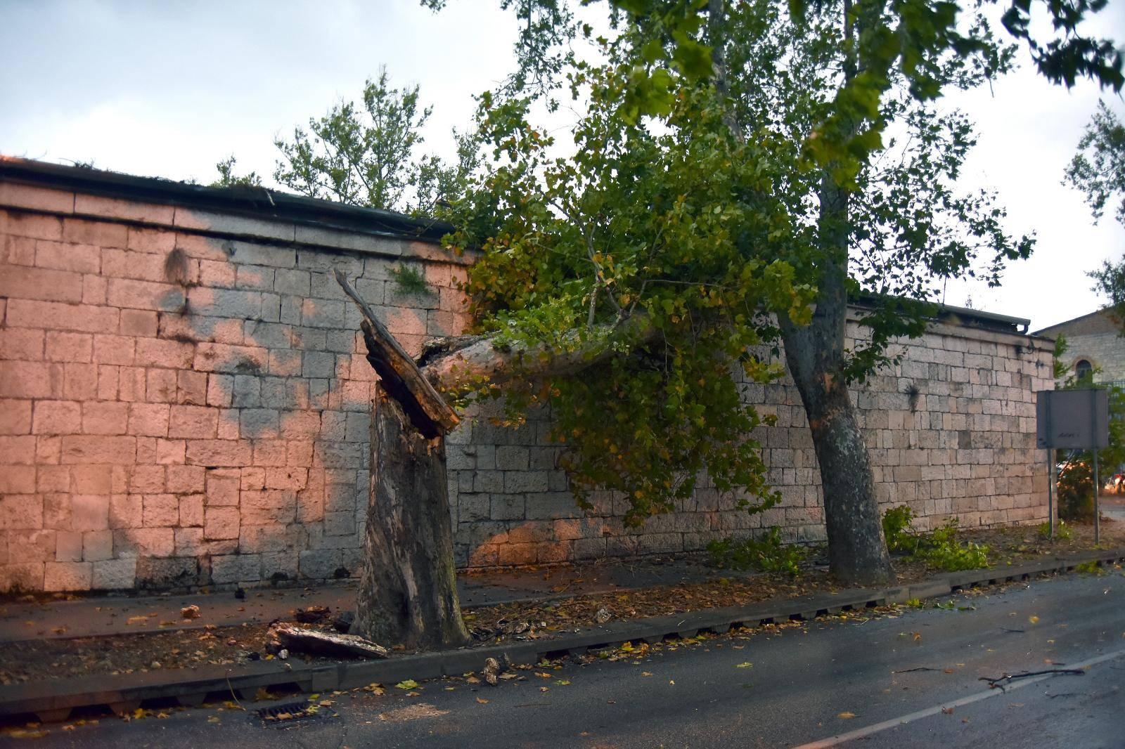 U Puli i okolici nevrijeme lomilo stabla