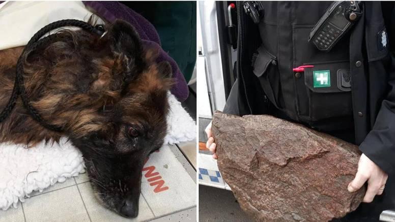 Monstrumi stavili psa u vreću, vezali za kamen i bacili u vodu