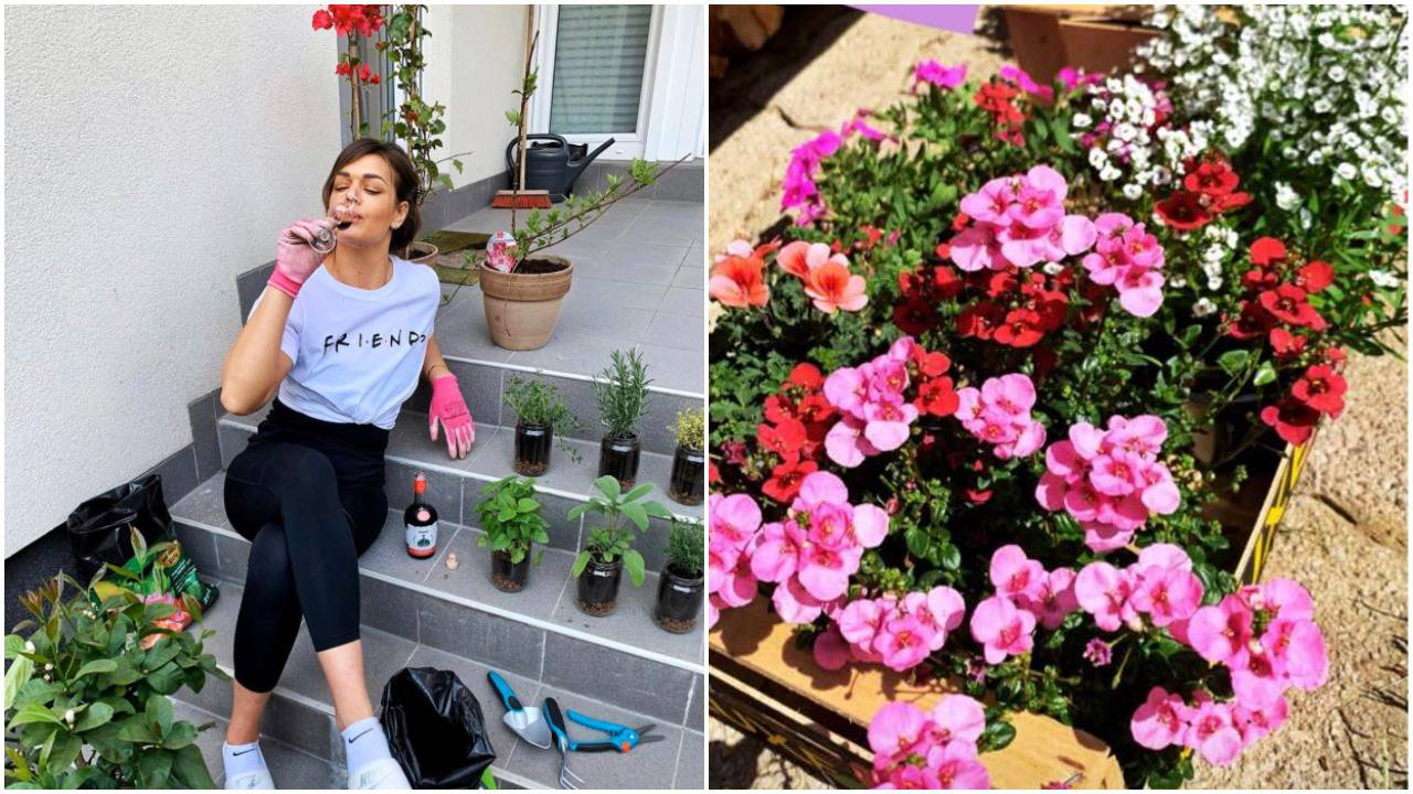 Sandra postala vrtlarica: Sadi cvijeće, nazdravlja šljivovicom