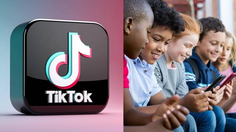 Prihodi od oglašavanja TikTok-a  temelje se na osobnim podacima korisnika i djece?