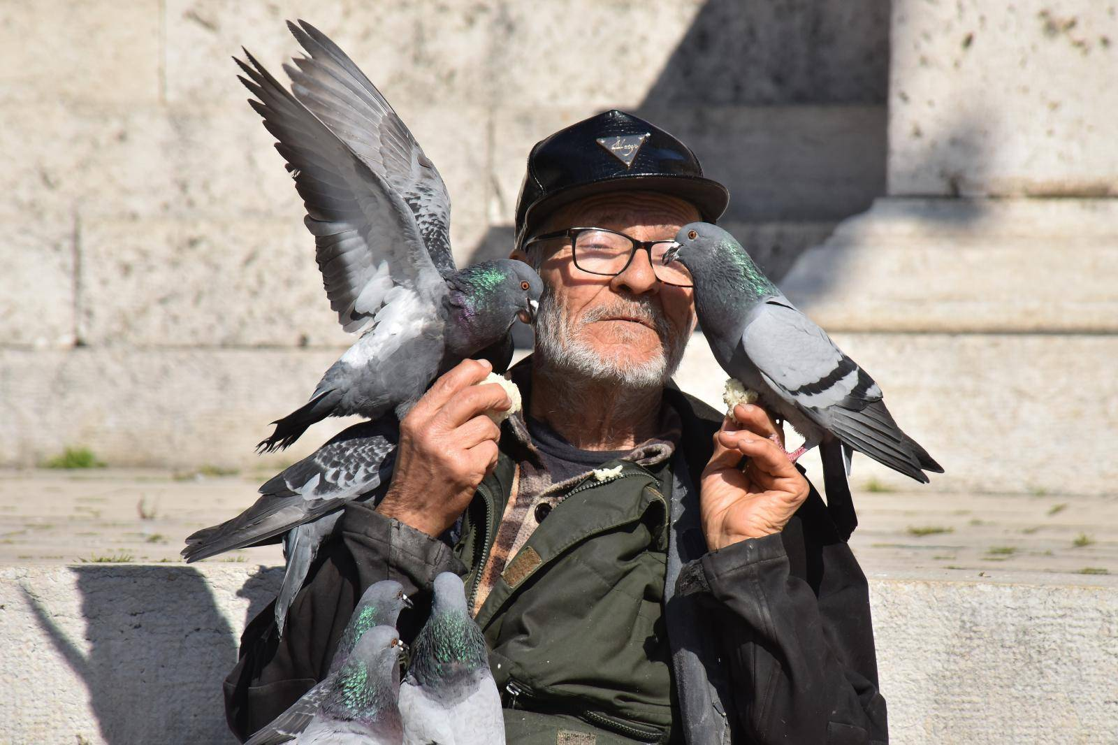 Pulski ljubitelj životinja hrani golubove na praznom Forumu