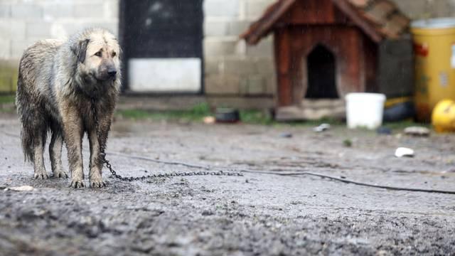 Nakon potresa Majskim Poljanama zbog dugotrajne kiše prijete poplave