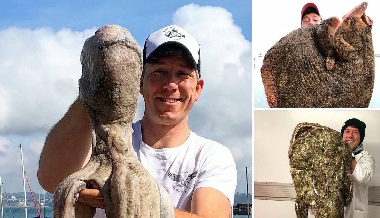 Majstor za velike ulove: Nakon riba upecao divovsku hobotnicu