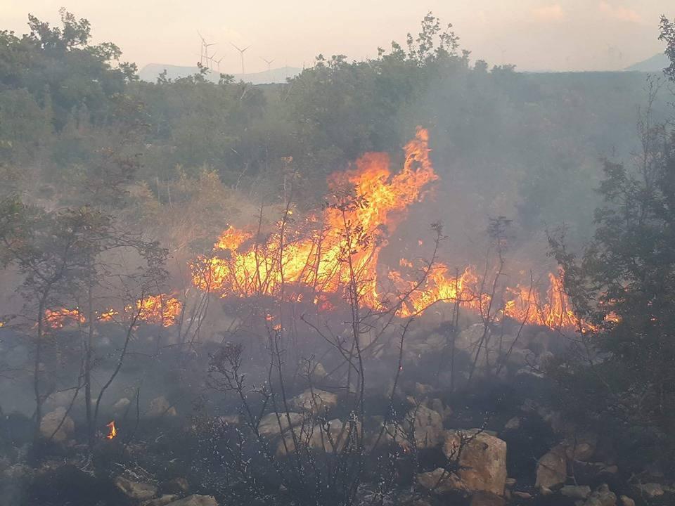 Vojska se uključila: Čak sedam kanadera gase požar kod Knina
