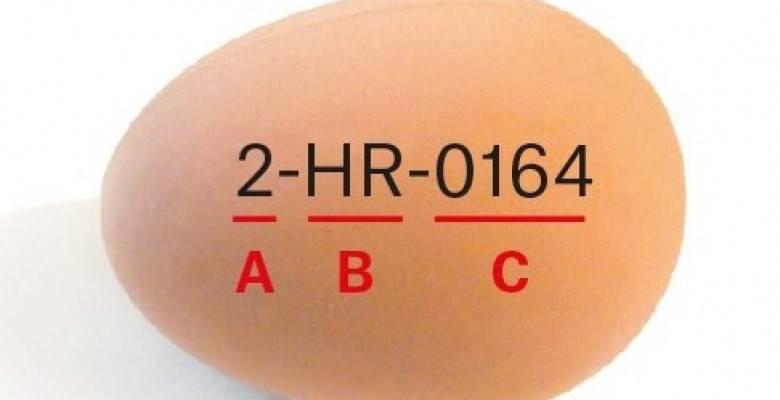 Slova i brojevi na jajima: Evo što znače i koja su kvalitetnija