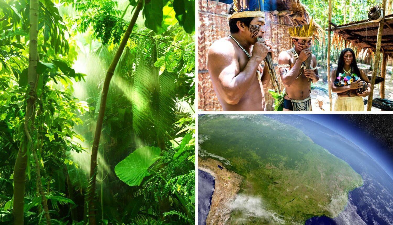 Čeka nas 8 crnih scenarija ako nestane amazonska prašuma