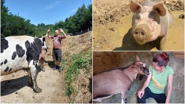 Na imanju kraj Vrbovca brinu se o spašenim životinjama: Sve imaju imena i uživaju u raju