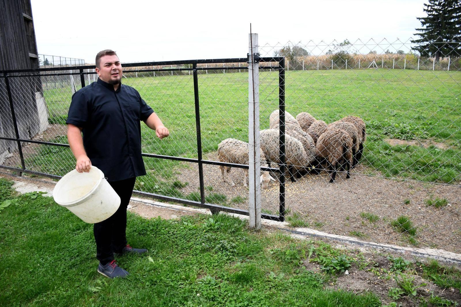 Svećenik i pastir: Volim ovce jer su i one Božja stvorenja