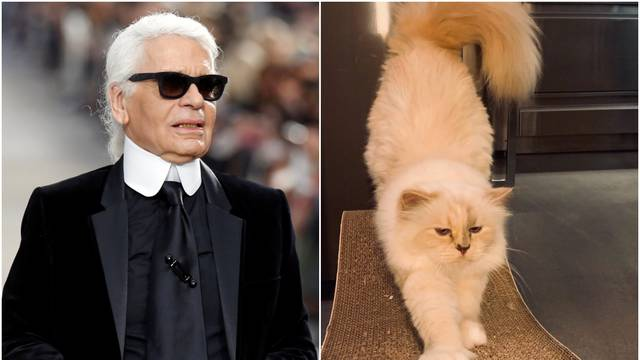Krenula borba za Lagerfeldovo nasljedstvo: Mačka je 'izvisila'