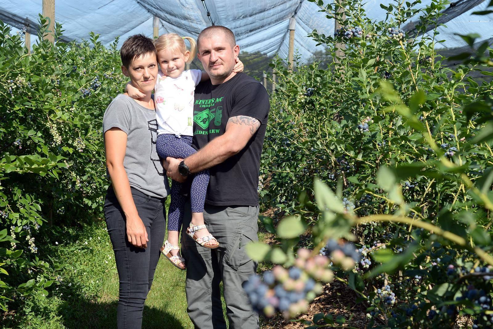 Obiteljski biznis: 'Proizvedemo četiri tone ekoloških borovnica'