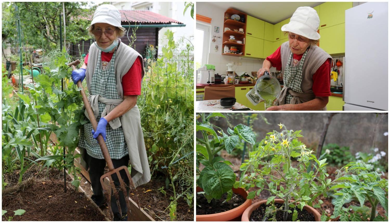 Zlatin rajski vrt: Ja sam prva započela s eko poljoprivredom