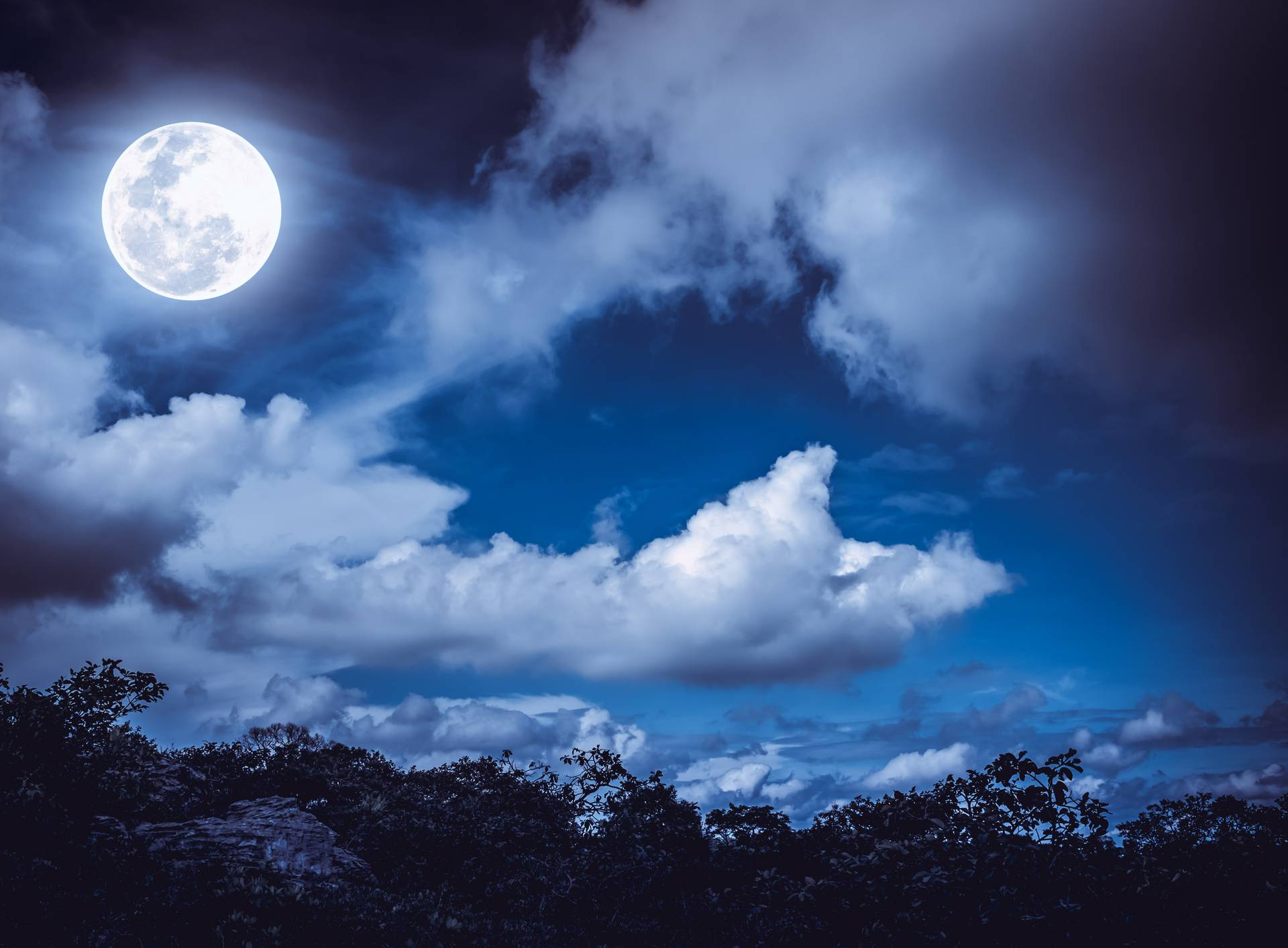 Silhouettes of tree and nighttime sky with clouds, full moon.