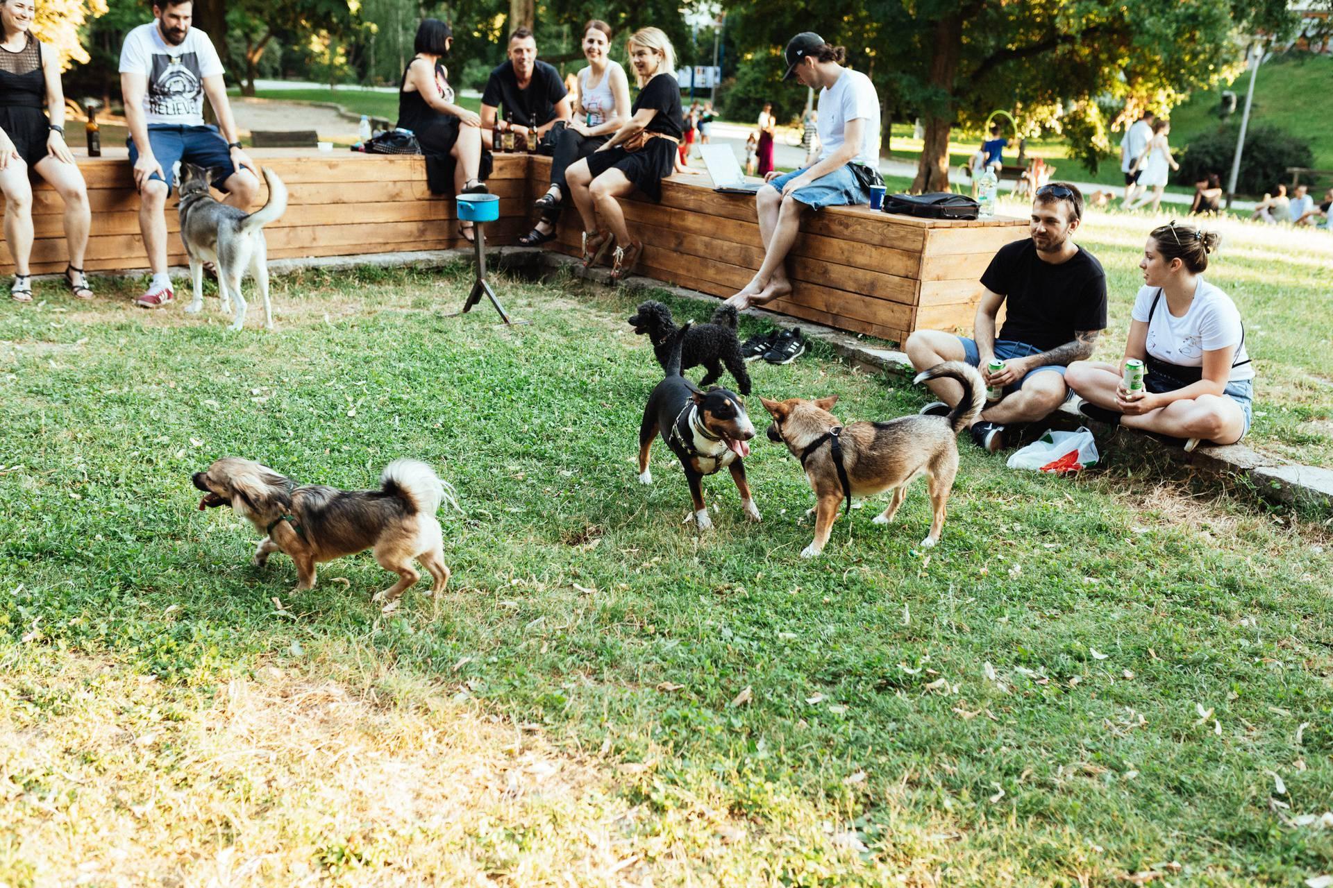 Svi na Ribnjak za napuštene pse