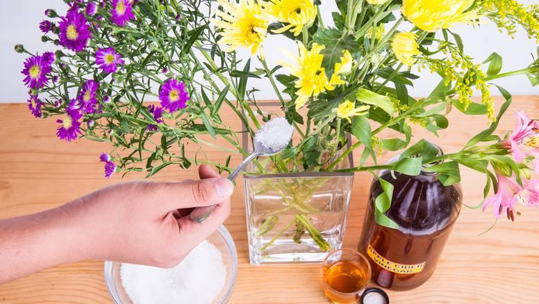 Iskušala je 5 kućnih pripravaka za cvijeće u vazi i našla savršen - nije počelo venuti čak 16 dana