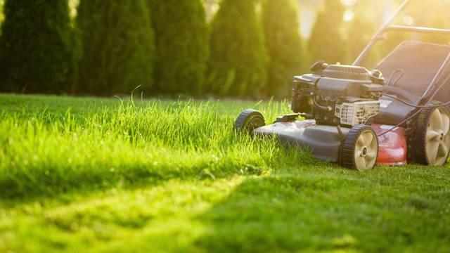 Pokošena trava može spasiti vaš travnjak tijekom vrućina