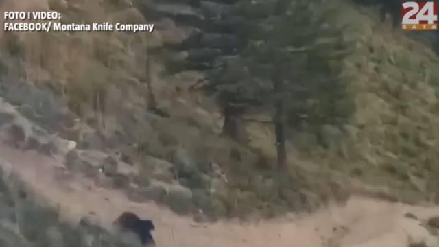 Crni medvjed vozača bicikla naganjao niz padinu