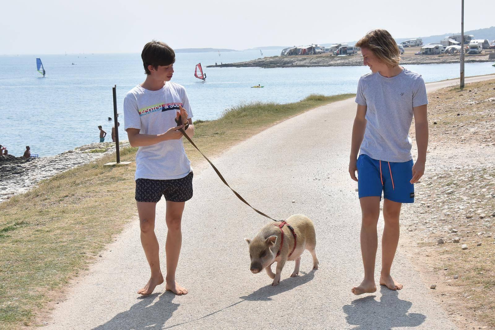 Ona je hit: 'Naša mala svinjica svakome na plaži uljepša dan'