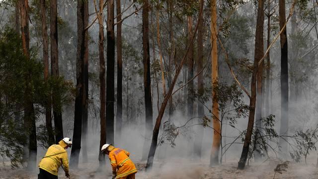 Bushfires in NSW, Australia