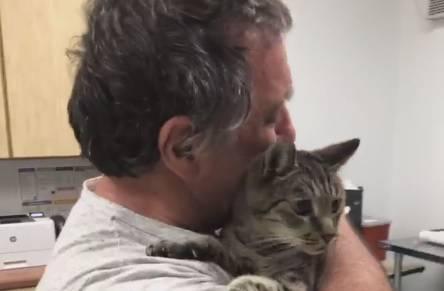 Čovjek u suzama: Pronašli su macu koju je izgubio prije 7 g.