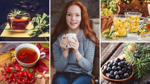 Top 25 čajeva za ublažavanje raznih tegoba: Od zdravstvenih problema do otapanja viška kila
