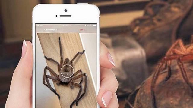 Critterpedia: Aplikacija koja prepoznaje pauke i gmazove