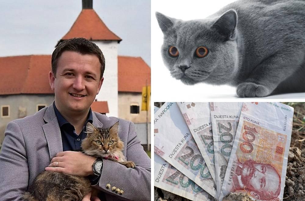 Imala ih 5: Hrvatica mačkama ostavila skoro tri milijuna kuna