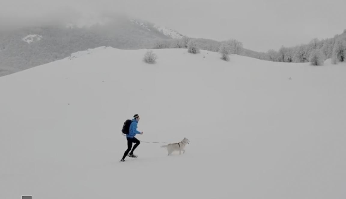 Snimka nove pustolovine: Ante Fabris sa psom trči po snijegu