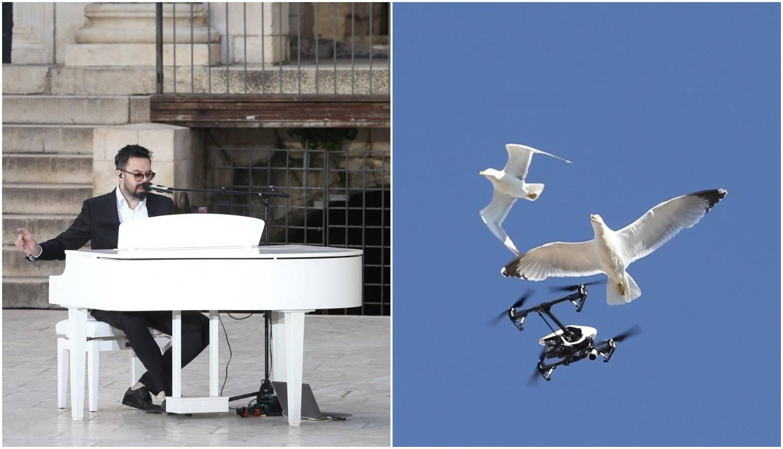 Grašo snimao koncert u Splitu, a galebovi su mu napali dron...