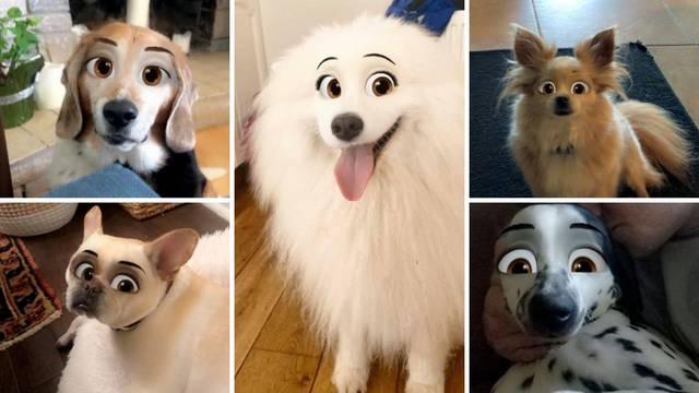 Novi hit: Filtar s kojim ćete svog psa pretvoriti u Disneyjev lik