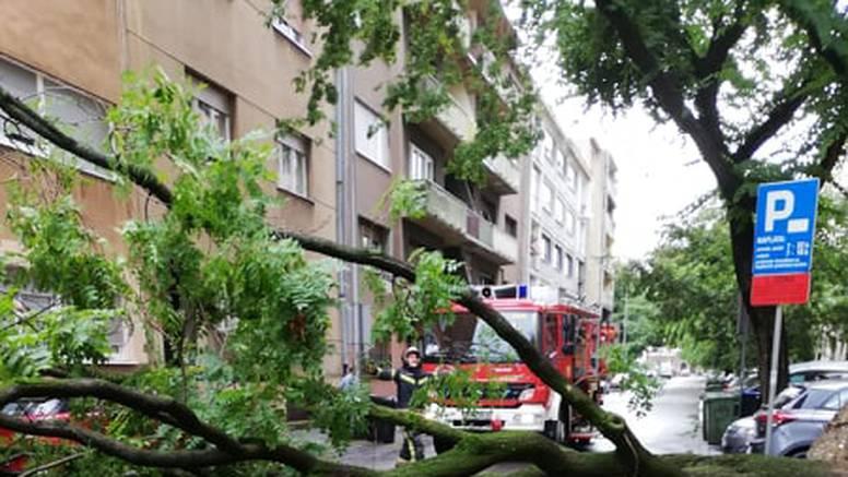 Nevrijeme u Zagrebu: Na auto palo stablo, blokiralo je i ulicu