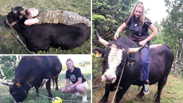Gabi (16) iz Muća: Moji bikovi prave su maze, jedu mi iz ruke