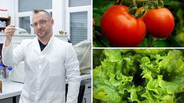 Čudo iz hrvatskog laboratorija: Skemijali smo kapsulu zbog koje su rajčice crvenije i zdravije