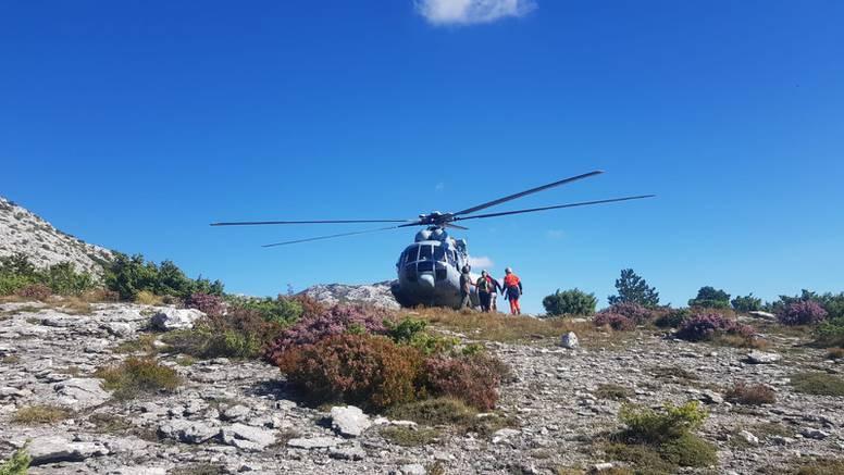 Dvije akcije HGSS-a zbog uboda stršljena: Planinar na Mosoru je izgubio svijest radi jake reakcije