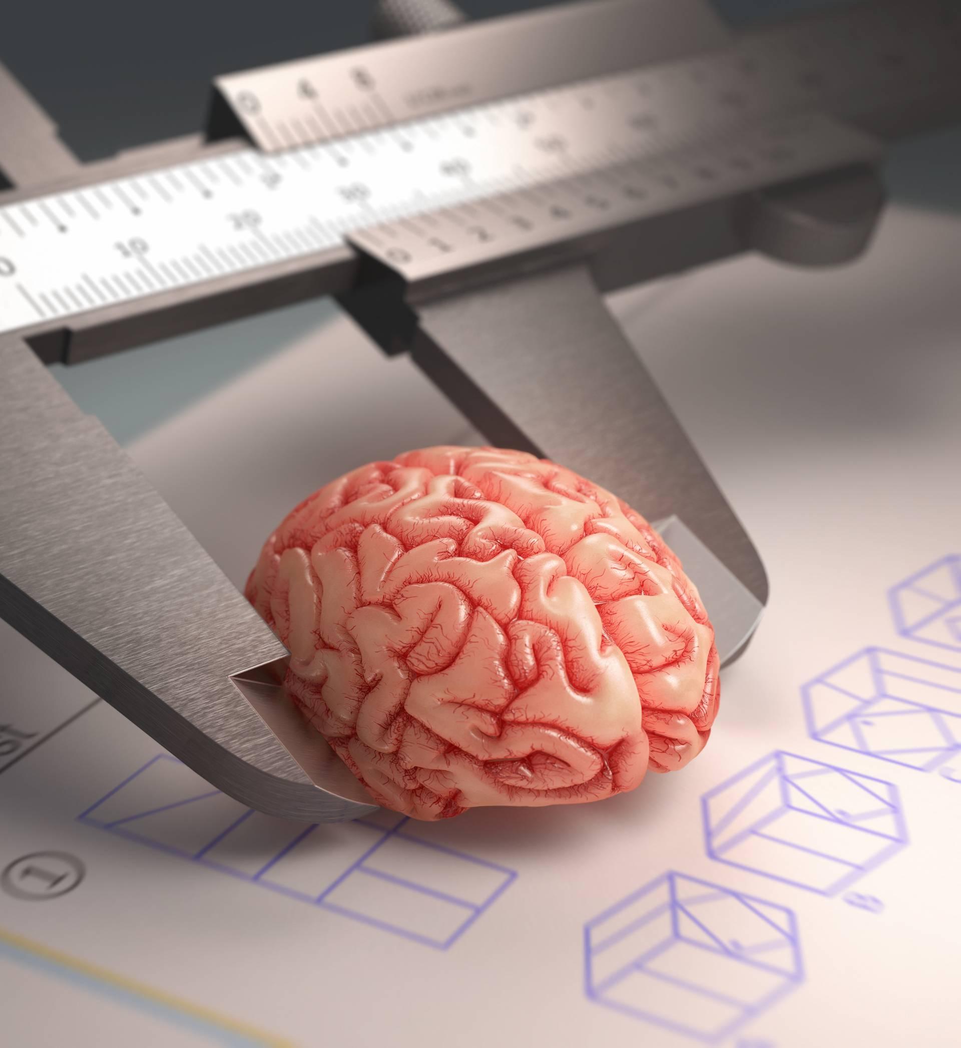 Od mita do istine: Koristimo li samo deset posto mozga ili ne?
