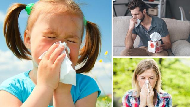 Stiže sezona peludnih alergija: 'Terapiju počnite uzimati tjedan dana prije sezone cvatnje'