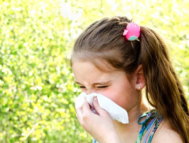 Little girl has allergy to spring blossoming and blowing her nos