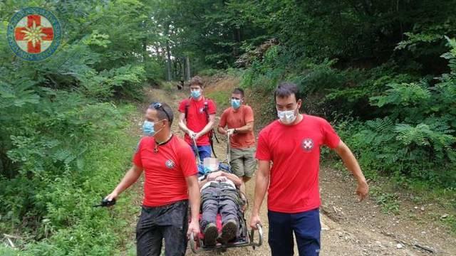 Planinara na Medvednici napali stršljenovi, zbog otrova se nije mogao kretati, spasio ga HGSS