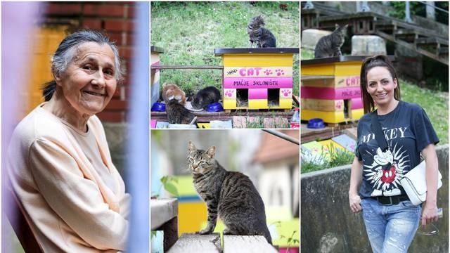 Hrabroj baki Ani ulične mace u Zagrebu duguju život: 'Govorili su da sam luda, ali ja ih volim'
