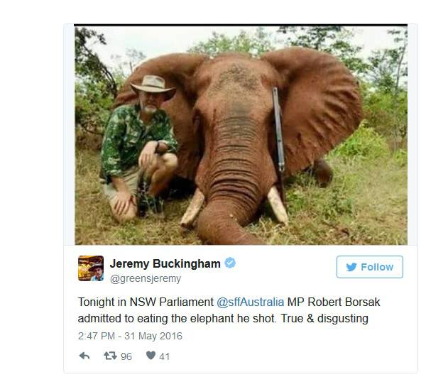 Političar: Ubio sam pa pojeo slona, to je moje ljudsko pravo